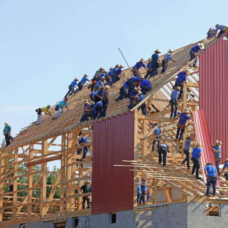 Photo of a group of people building a barn